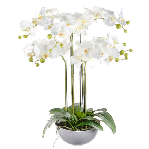 White Artificial Orchid