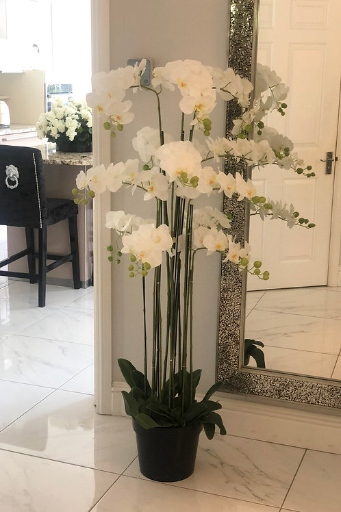Extra Large White Floor Standing Orchid