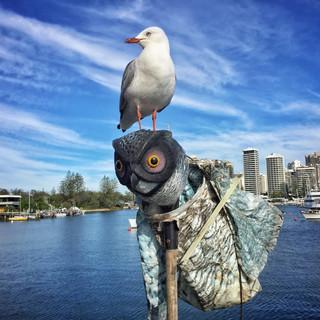 PORT: Brisbane