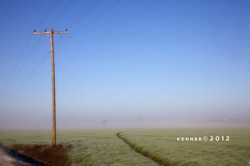 Telephone Pole in Morning Mist