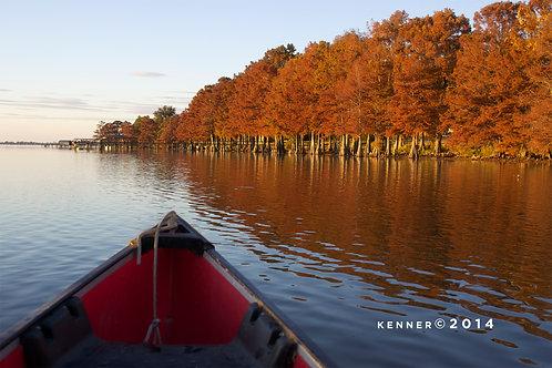 Canoe and Fall Cypress