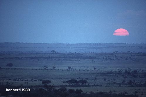 Maasai Mara at Sunset