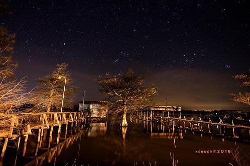 Cypress Tree/ Pier at Night