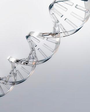 DNA%20Strand_edited.jpg