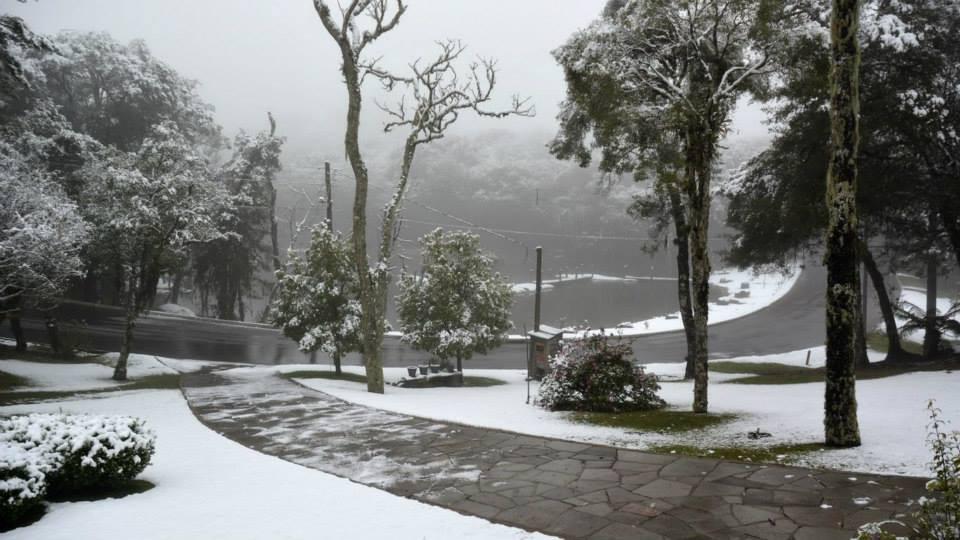 paisagem com neve, arvores com neve e um caminha de pedras sem neve, grama coberta de neve