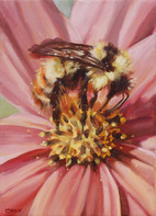 """""""Bumble Bee Cosmos II"""""""
