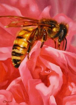 """Hollyhock Honey Bee II"""