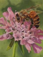 """""""Pincushion Honey Bee"""""""