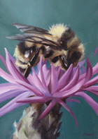 """""""Thistle & Bumble"""""""