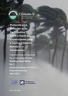 WorkingPaper3-Cover-Portuguese.png