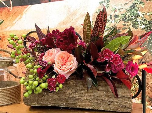 Arranjo M no tronco com flores e sementes