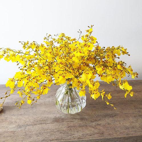 Arranjo com orquidea amarela (oncidium)