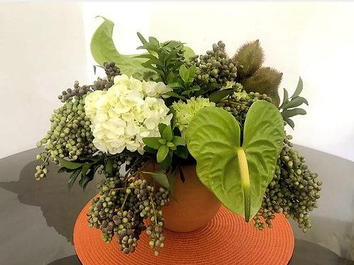 Arranjo M com flores nobres e sementes no vaso de barro