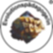 Evo-Logo-weiss.png