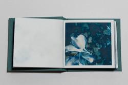 brokenflowers_05