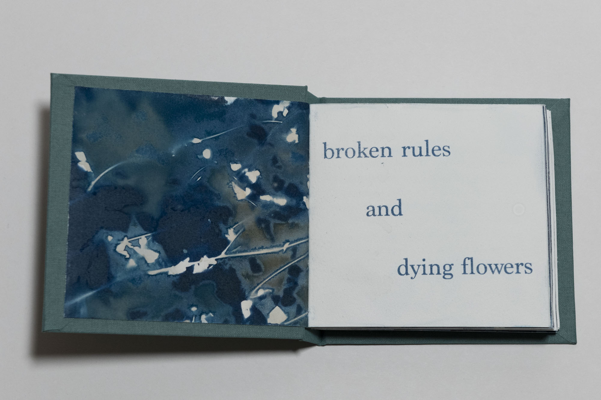 brokenflowers_02