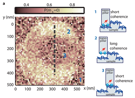12. Decoherence imaging of spin ensembles using a scanning single-electron spin in diamond