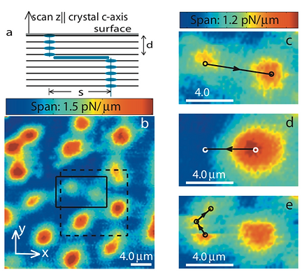 06. Magnetic force microscopy study of interlayer kinks in individual vortices in the underdoped cuprate superconductor YBa_ {2} Cu_ {3} O_ {6+ x}
