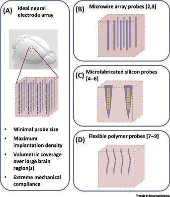 21. Spikes to Pixels: Camera Chips for Large-scale Electrophysiology