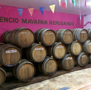 Tequila aging