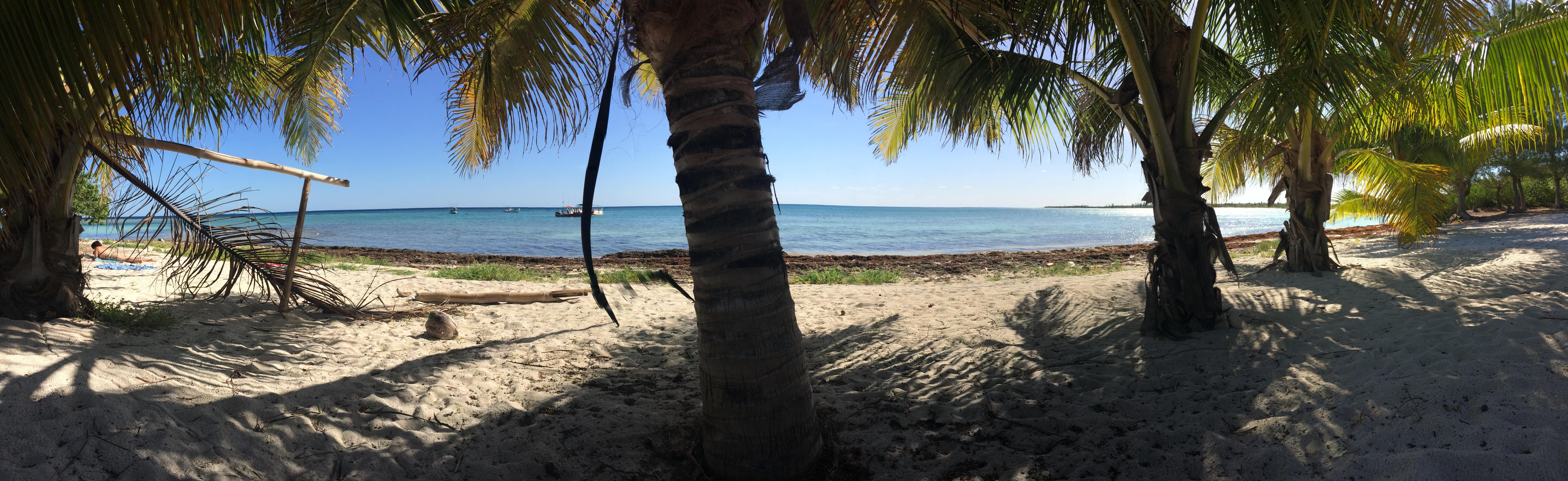 Plage deserte sous les cocotiers