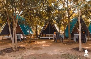 panther camping.jpg