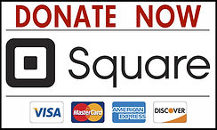 Square-Donate-Now1-1024x612.jpg