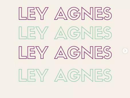Aprueban Ley Agnes en Puebla