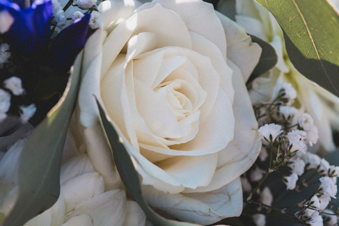 weddings-slovenia-kras-6926.jpg