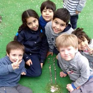Naturaleza en el patio en Huepil Afterschool