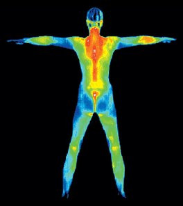 Upcoming Thermography Appointment Times