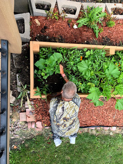 Tending to the vegetables