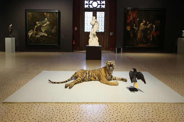 """Tiger fed by a Raven after Giovanni Lanfranco's """"Elijah fed by a Raven"""" (1624 – 1625) - The painting is behind the installation on the left"""