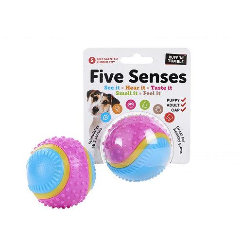 Five Senses Sensory Ball Small