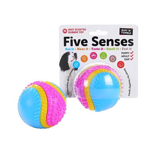 Five Senses Sensory Ball Medium