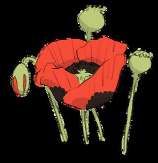 Poppy.png