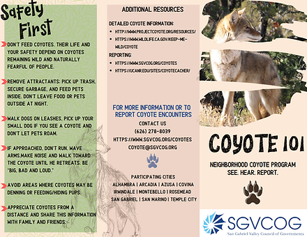 Coyote 101 Brochure.png