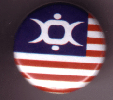 Icon Of Coil - USA Flag Pin