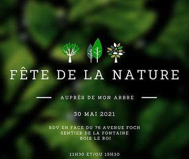 NATURE (2).png