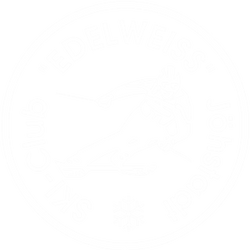 logo_Ski_Jöhstadt