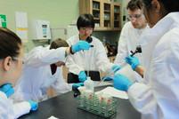 Assessing water quality using benthic macroinvertebrates at Shad Waterloo 2012.jpg