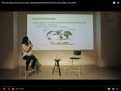 Alice giving plastic pollution guest lecture 2019