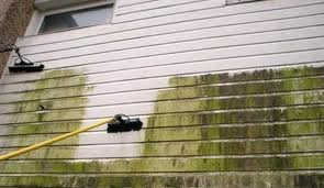 filthy cladding