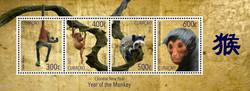 Monkey-Ladder-complete2