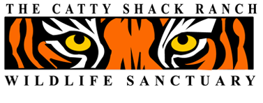 RCL Cattyshack.png