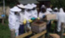 Apiary.pics.April2010 006.jpg