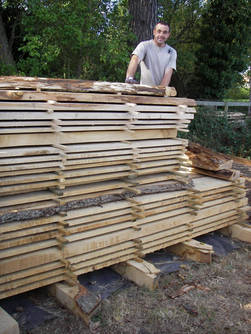 Oak Planks Stacked For Drying