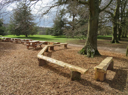 Western Red Cedar chunky benches