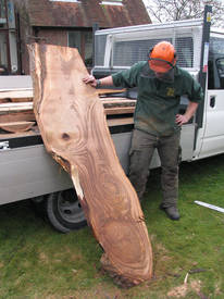 Beautiful Sweet Chestnut Plank