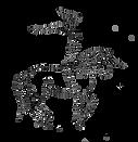 approche equestre voltigao